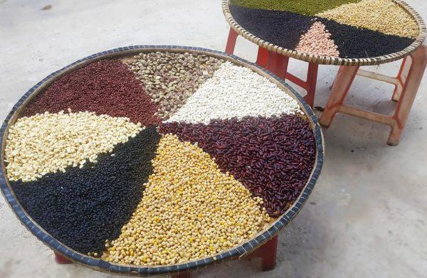 Bột Ngũ Cốc 20 loại hạt