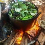 Cách nấu Cao Dầu Gội Đầu Thảo Dược tại Nhà