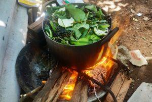 Nấu cao dầu gội đầu tại nhà